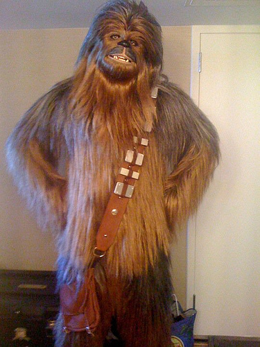 6160243471_bb3daa14fe.jpg & Chewbacca build: | Boba Fett Costume and Prop Maker Community - The ...
