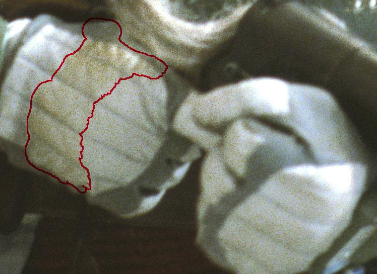 glove stain_outline.jpg